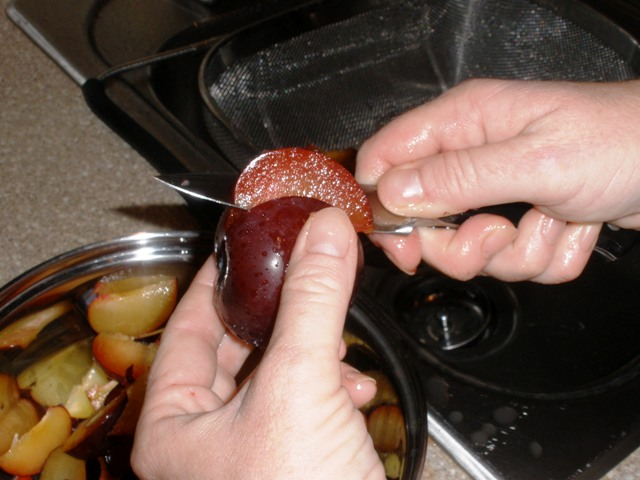 Here are my hands cutting up the plums.  I washed them well, first.  The hands and the plums.  Plum skins are very thin, so just leave them on.  If you have an Aversion to plum skins, you can peel them, I guess.