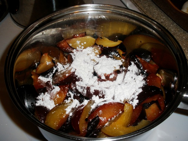 Everybody in the pool:  plums, honey, salt, fruit juice and corn starch.  Add the cornstarch while everything is still cold and stir it in, or you'll have lumps.  I guess you could mix the cornstarch into the fruit juice first; yes, that would've been a Good Idea.  Note to self...