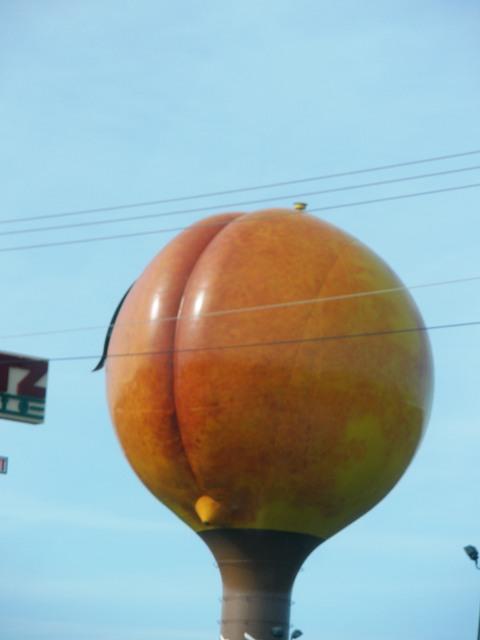 Gaffney peach